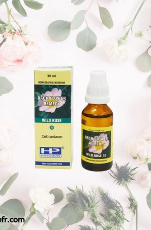 Natural Bach Flower Remedies-Wild Rose