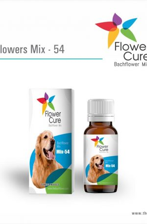 FlowerCure Mix 54 for Stress in Dogs