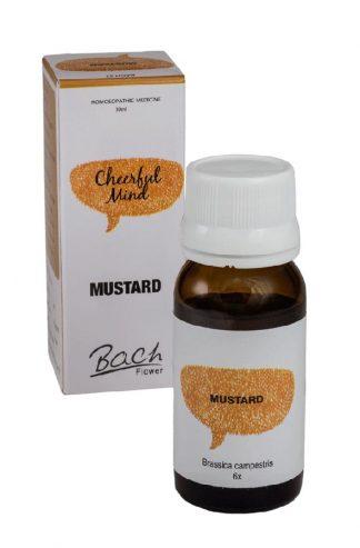 alfa omega mustard Depression