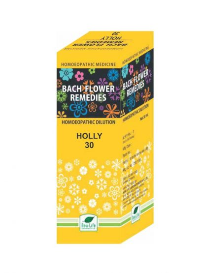 New Life Holly for Jealousy and Revenge