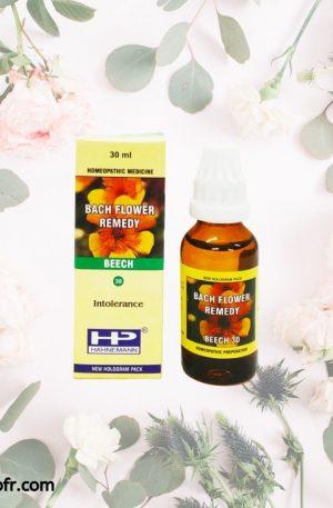 Natural Bach Flower Remedies-Beech
