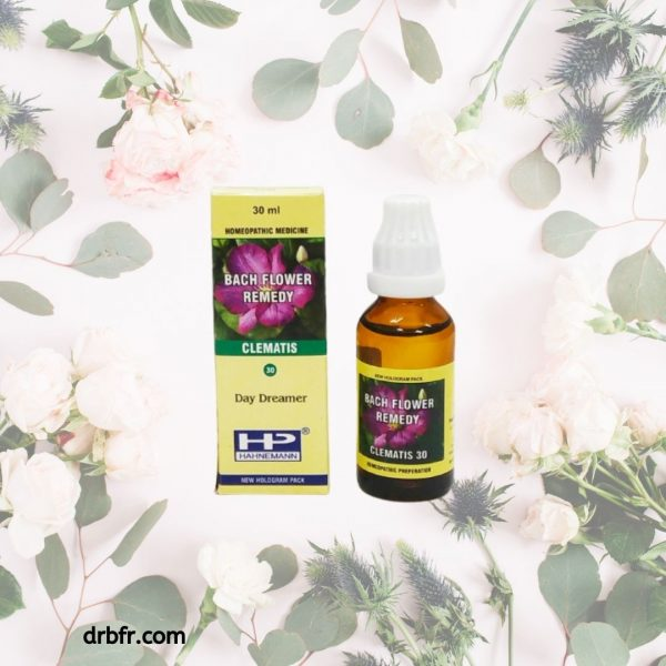 Natural Bach Flower Remedies-Clematis
