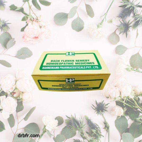 Natural Bach Flower Remedies-kit