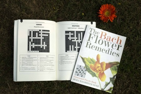 BFR Puzzle-Book