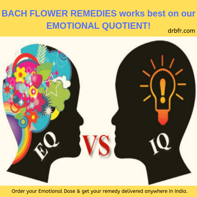 heal with bach flower remedies
