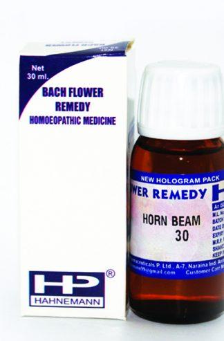 HP Horn Beam for Tiredness