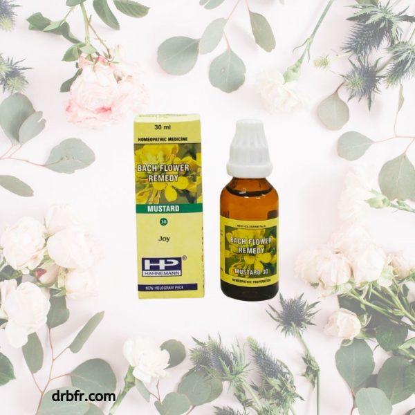 Natural Bach Flower Remedies-Mustard