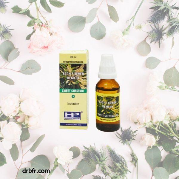 Natural Bach Flower Remedies-Sweet Chestnut
