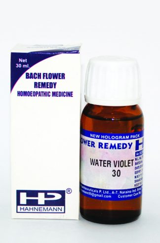 HP Water Violet for Loneliness