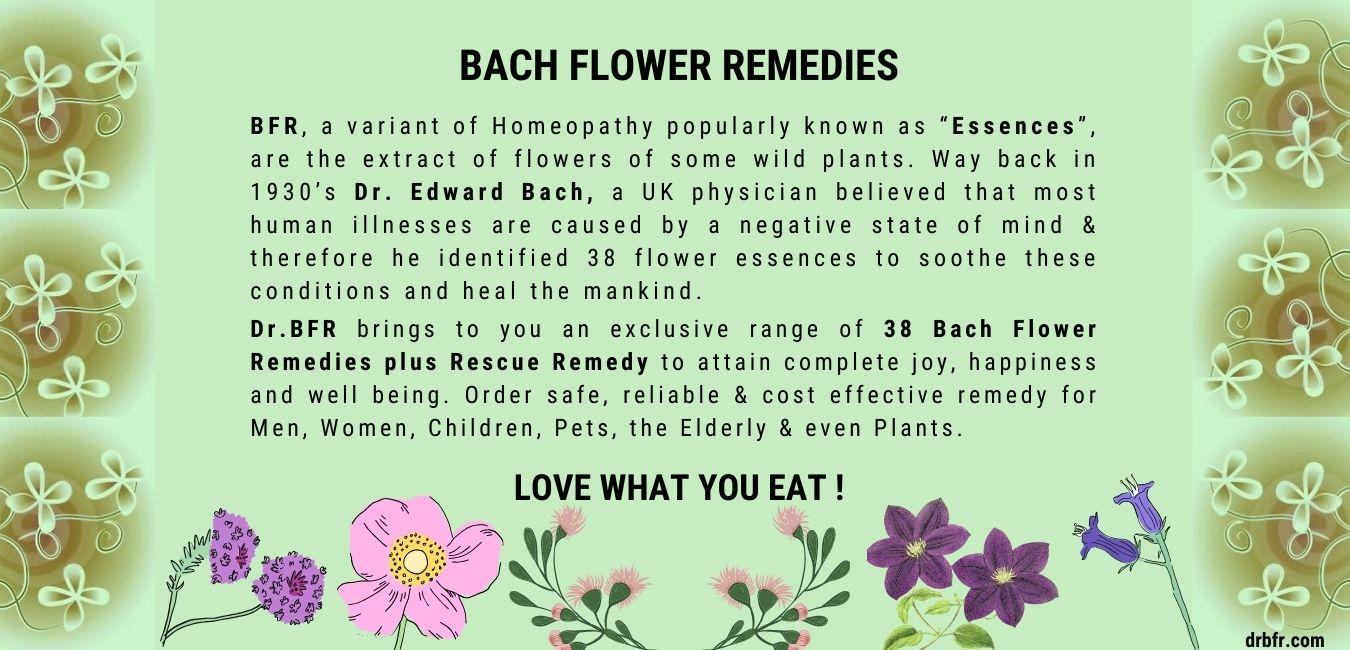 Bach Flower Banner