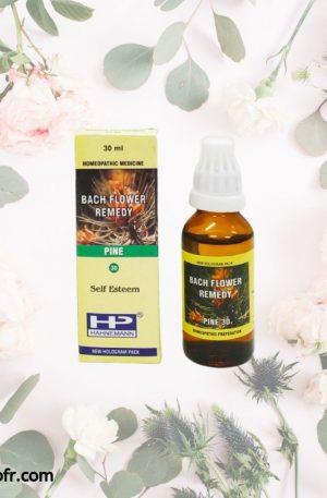 Natural Bach Flower Remedies-Pine