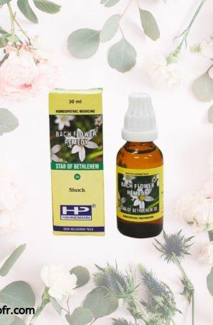 Natural Bach Flower Remedies-Star Of Bethlehem
