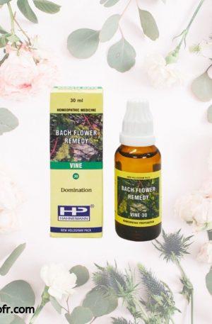Natural Bach Flower Remedies-Vine
