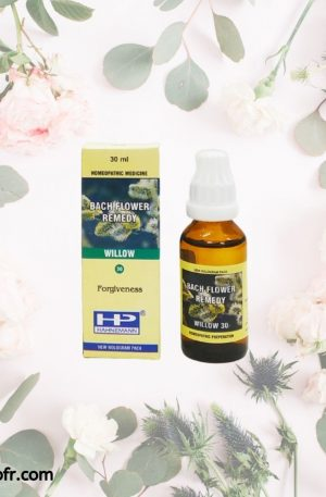 Natural Bach Flower Remedies-Willow