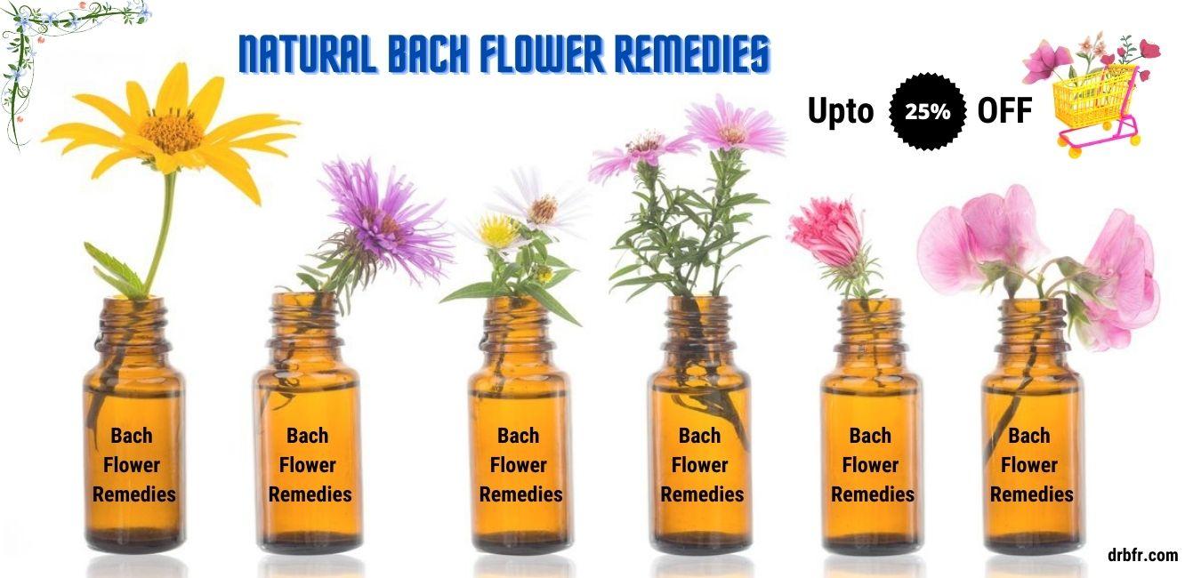 Natural Bach Flower Remedies banner
